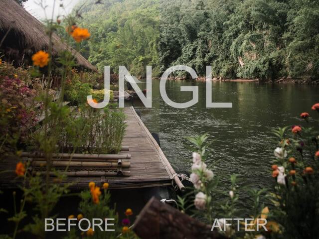 JNGL   2 IN 1